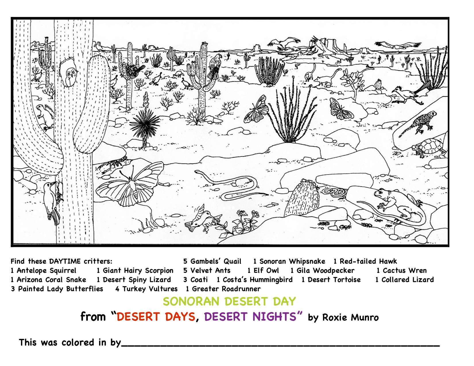 Mazes and coloring pages - Roxie Munro Author/Artist